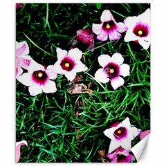 Pink Flowers Over A Green Grass Canvas 8  X 10  by DanaeStudio