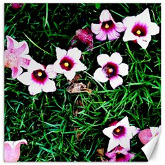 Pink Flowers Over A Green Grass Canvas 12  X 12   by DanaeStudio