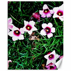 Pink Flowers Over A Green Grass Canvas 11  X 14   by DanaeStudio