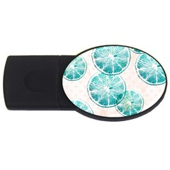 Turquoise Citrus And Dots Usb Flash Drive Oval (2 Gb)  by DanaeStudio