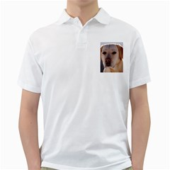 Yellow Labrador Golf Shirts by TailWags