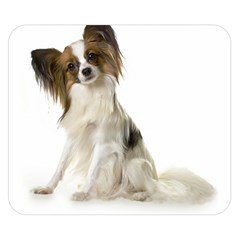 Papillon Full Double Sided Flano Blanket (Small)  by TailWags