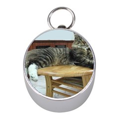 Maine Coon Laying 2 Mini Silver Compasses by TailWags