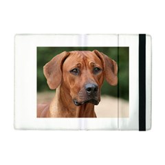 2 Rhodesian Ridgeback iPad Mini 2 Flip Cases by TailWags