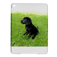 Black Lab Puppy Ipad Air 2 Hardshell Cases by TailWags