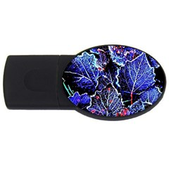 Blue Leaves In Morning Dew Usb Flash Drive Oval (4 Gb)  by Costasonlineshop