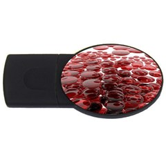Red Lentils Usb Flash Drive Oval (4 Gb)  by Onesevenart