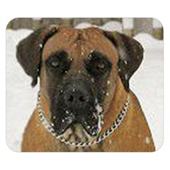 Boerboel  Double Sided Flano Blanket (Small)  by TailWags