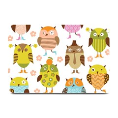 Highres Owls Plate Mats by AnjaniArt