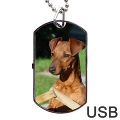 Min Pin On Gate  Dog Tag Usb Flash (two Sides)  by TailWags