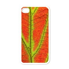 Unique Leaf Apple Iphone 4 Case (white) by AnjaniArt