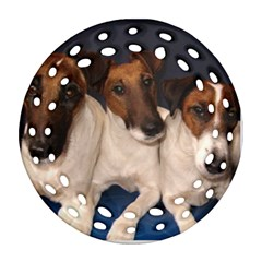 Smooth Fox Terrier Group Round Filigree Ornament (2Side) by TailWags