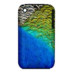 Blue Peacock Feathers Iphone 3s/3gs by Jojostore