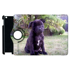 Puppy Staffordshire Bull Terrier Apple iPad 2 Flip 360 Case by TailWags