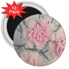 Cloves Flowers Pink Carnation Pink 3  Magnets (10 Pack)  by Amaryn4rt