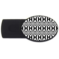Background Usb Flash Drive Oval (2 Gb)  by Jojostore