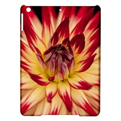 Bloom Blossom Close Up Flora Ipad Air Hardshell Cases by Amaryn4rt