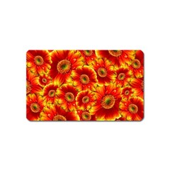 Gerbera Flowers Blossom Bloom Magnet (name Card) by Amaryn4rt