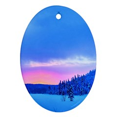 Winter Landscape Snow Forest Trees Ornament (oval)  by Amaryn4rt