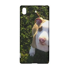 American Pitbull Terrier Looking Up Sony Xperia Z3+ by TailWags