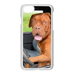 Dogue De Bordeaux Driving Apple iPhone 7 Seamless Case (White) by TailWags