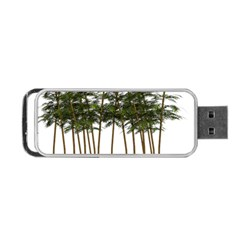 Bamboo Plant Wellness Digital Art Portable Usb Flash (two Sides) by Amaryn4rt