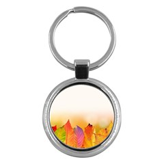Autumn Leaves Colorful Fall Foliage Key Chains (round)  by Amaryn4rt