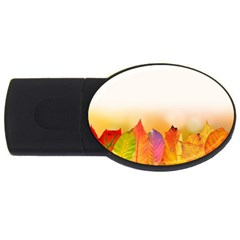 Autumn Leaves Colorful Fall Foliage Usb Flash Drive Oval (4 Gb)  by Amaryn4rt