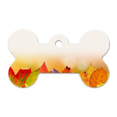Autumn Leaves Colorful Fall Foliage Dog Tag Bone (two Sides) by Amaryn4rt