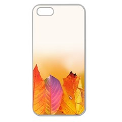 Autumn Leaves Colorful Fall Foliage Apple Seamless Iphone 5 Case (clear) by Amaryn4rt