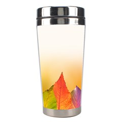 Autumn Leaves Colorful Fall Foliage Stainless Steel Travel Tumblers by Amaryn4rt