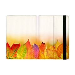 Autumn Leaves Colorful Fall Foliage Ipad Mini 2 Flip Cases by Amaryn4rt