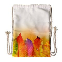 Autumn Leaves Colorful Fall Foliage Drawstring Bag (large) by Amaryn4rt