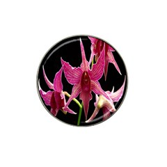 Orchid Flower Branch Pink Exotic Black Hat Clip Ball Marker (10 Pack) by Jojostore