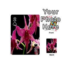 Orchid Flower Branch Pink Exotic Black Playing Cards 54 (mini)  by Jojostore