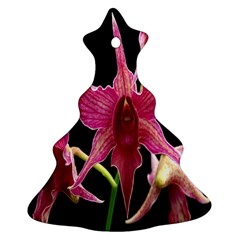 Orchid Flower Branch Pink Exotic Black Christmas Tree Ornament (2 Sides) by Jojostore