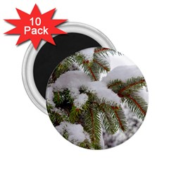 Brad Snow Winter White Green 2 25  Magnets (10 Pack)  by Amaryn4rt