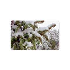 Brad Snow Winter White Green Magnet (name Card) by Amaryn4rt