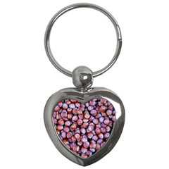 Hazelnuts Nuts Market Brown Nut Key Chains (heart)  by Amaryn4rt