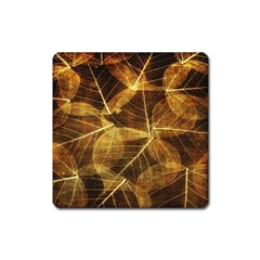 Leaves Autumn Texture Brown Square Magnet by Amaryn4rt
