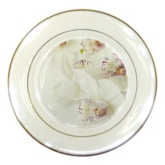 Orchids Flowers White Background Porcelain Plates by Amaryn4rt