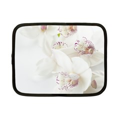 Orchids Flowers White Background Netbook Case (small)  by Amaryn4rt