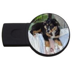 Australian Shepherd Black Tri Puppy USB Flash Drive Round (2 GB) by TailWags