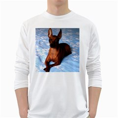 Min Pin Laying White Long Sleeve T-Shirts by TailWags