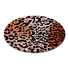 Tiger Motif Animal Oval Magnet by Amaryn4rt