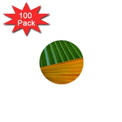 Pattern Colorful Palm Leaves 1  Mini Buttons (100 Pack)