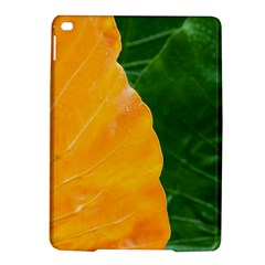 Wet Yellow And Green Leaves Abstract Pattern Ipad Air 2 Hardshell Cases by Amaryn4rt