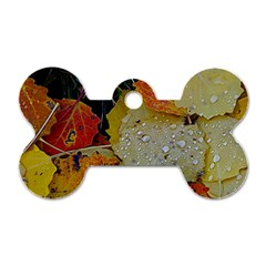 Autumn Rain Yellow Leaves Dog Tag Bone (one Side) by Onesevenart