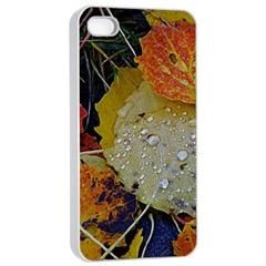 Autumn Rain Yellow Leaves Apple Iphone 4/4s Seamless Case (white) by Onesevenart