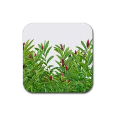 Tropical Floral Print Rubber Coaster (square)  by dflcprints